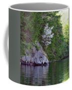 Wild Dogwood Coffee Mug