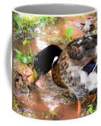 Wild Duck Mallard 1 Coffee Mug