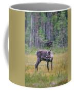 Wild Finnish Forest Reindeer 24 Coffee Mug