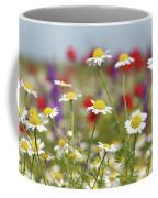 Wild Flowers Field Nature Spring Scene Coffee Mug
