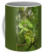 Wild Grapes 1992 Coffee Mug