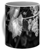 Wild Grapes In Light 2 Coffee Mug