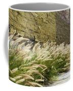 Wild Grass Along An Alley Wall Coffee Mug