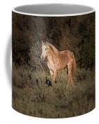 Wild Horse At Sunset Coffee Mug