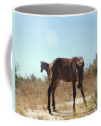Wild Horses Desert Of Mexico Coffee Mug