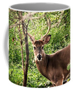 Wild In The Country Coffee Mug