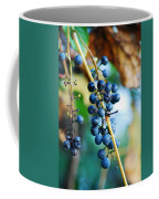 Wild Michigan Grapes Coffee Mug