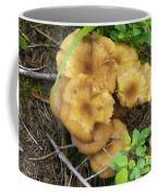 Wild Mushrooms 1 Coffee Mug