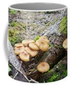 Wild Mushrooms 2 Coffee Mug