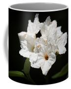 Wild Olive Tree Bloom Coffee Mug