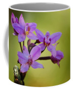 Wild Orchids 2 Coffee Mug
