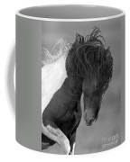 Wild Pinto Stallion Coffee Mug
