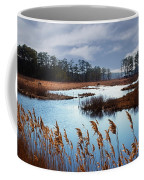 Wild Ponies Grazing Coffee Mug