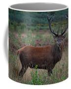 Wild Red Deer Stag Coffee Mug