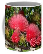 Wild, Red Fluffy Flowers  Coffee Mug