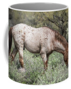 Wild Roan Stallion  Coffee Mug