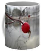 Wild Rose Hip On Mississippi River Bank Coffee Mug