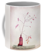 Wild Rosehips In A Bottle Coffee Mug