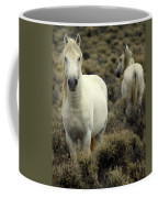 Wild Stallion Coffee Mug
