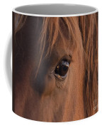 Wild Stallion's Eye Coffee Mug
