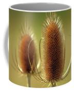 Wild Teasel Coffee Mug