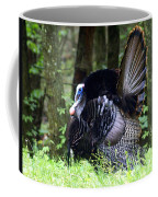 Wild Turkey 1 Coffee Mug