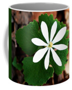 Wild White Coffee Mug