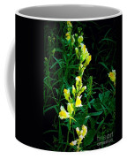 Wild Yellow Flowers On Black Background Coffee Mug