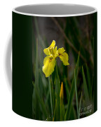 Wild Yellow Iris Coffee Mug