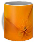Wildflower Art Poppy Flower 6 Poppies Artwork Prints Cards Coffee Mug