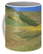 Wildflower Display - Salisbury Potrero Coffee Mug
