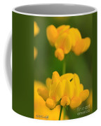 Wildflower Named Birdsfoot Trefoil Coffee Mug