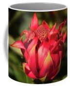 Wildflower Waratah Coffee Mug