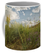 Wildflowers Of Chaco Coffee Mug