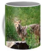 Wiley Coyote Coffee Mug