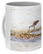 Willet Set 4 Of 4 By Darrell Hutto Coffee Mug