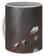 Willow Catkins 1 Coffee Mug