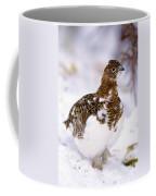 Willow Ptarmigan Coffee Mug
