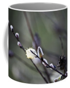 Willow Stages Coffee Mug