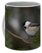 Willow Tit Coffee Mug