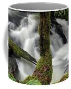 Wilson Creek #17 Coffee Mug