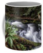 Wilson Creek #18 With Added Cedar Waxwing Coffee Mug