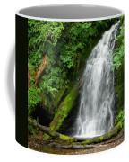 Wilson River Hwy Waterfall Coffee Mug