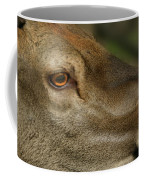 Wind Over Red Deer Coffee Mug