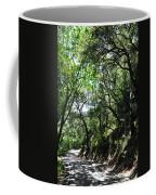 Winding Road Santa Ynez Mountains Coffee Mug