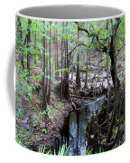 Winding Sopchoppy River Coffee Mug