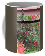 Window Bottle Coffee Mug