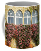 Windows In Spring Coffee Mug