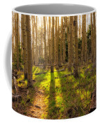 Windsor Trail At Dusk - Santa Fe National Forest New Mexico Coffee Mug