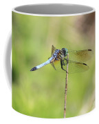 Windswept Dragonfly Coffee Mug